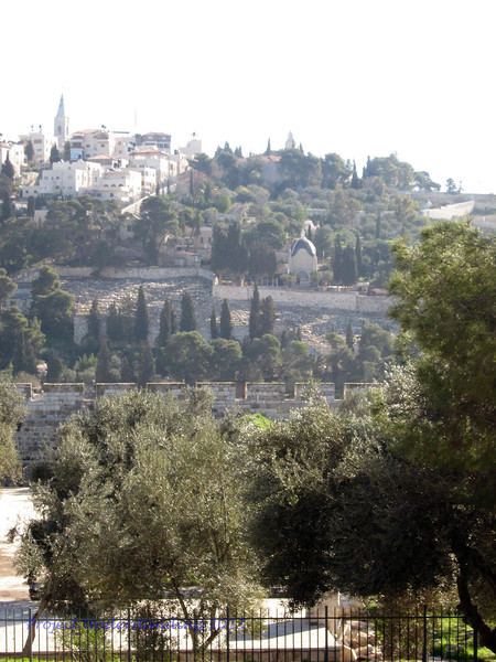 View of the Mount of Olives from Temple Mount area.  Dominus Flevit is clearly in view.