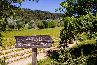Caveau Domaine de Marie, Provence, May 2007