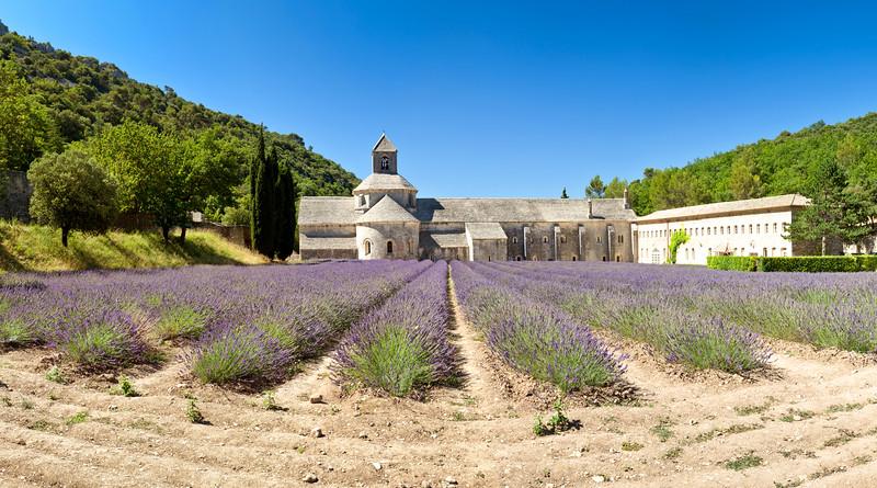 Abbaye de Sénanque, Vaucluse, Provence, France, 2012
