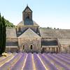 Abbaye de Senanque near village Gordes, Vaucluse region, Provence, France