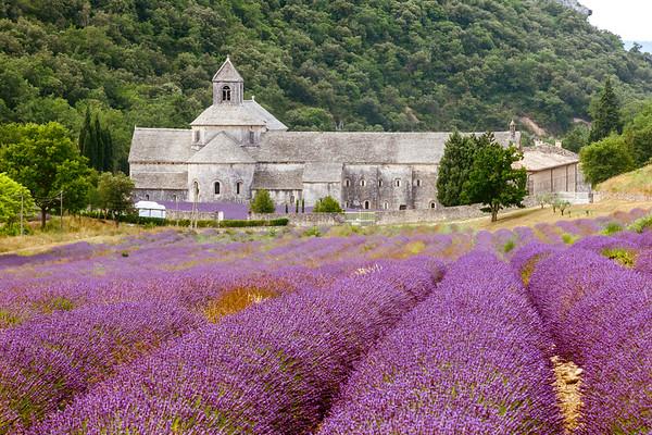 Abbaye,  Provence, France, 2013