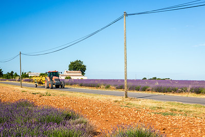 Seasonal works, Valensole, Provence, France, 2017