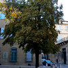 Aix Square - Les 4 Dauphins