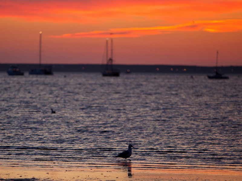 Sunrise at Cape Cod