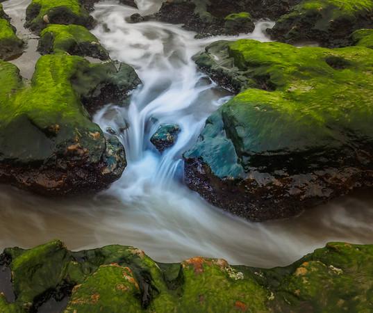 The Tidal Reef