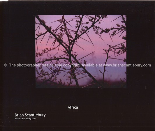 """Africa, A great collection of 85+ images. Available in hard cover, with dust jacket or soft cover versions. The Dust Jacket version has a little more info and images. A wonderful gift, or your personal record,of the wonderful continent.<br /> Review the book;<br />  <a href=""""http://www.blurb.com/bookstore/detail/685976"""">http://www.blurb.com/bookstore/detail/685976</a>"""