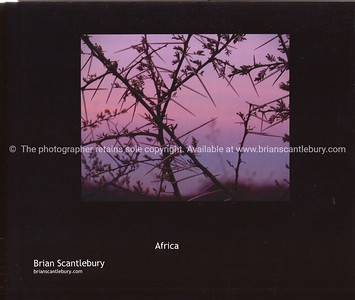 Africa, A great collection of 85+ images. Available in hard cover, with dust jacket or soft cover versions. The Dust Jacket version has a little more info and images. A wonderful gift, or your personal record,of the wonderful continent. Review the book; http://www.blurb.com/bookstore/detail/685976
