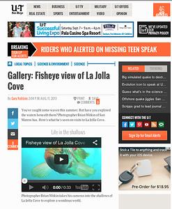 San Diego Union Tribune Underwater Photo Gallery: Sunday August 11th, 2013.