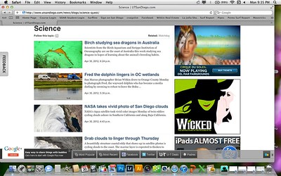 My dolphin article in the Science section of the San Diego Union Tribune's website.