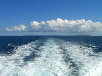 CIMG0831Vieques island PR_06
