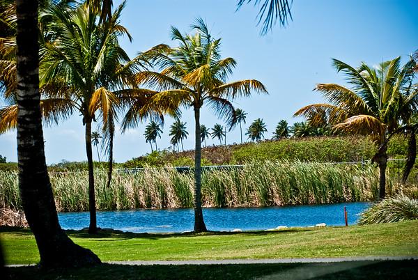 Puerto Rico A 2011-3338