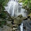 La Coca Waterfall - El Yunque Rain Forest