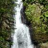 La Mina Falls, El Yunque Rain Forest