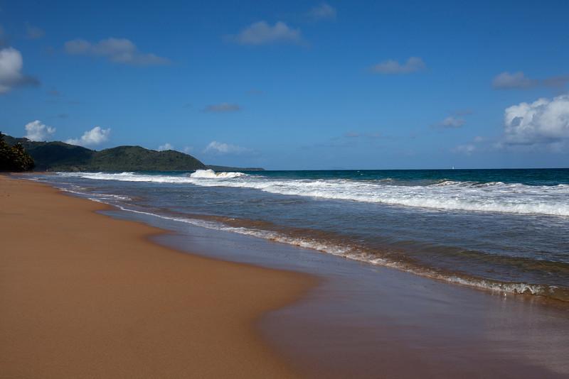 Tuna Point Beach_0081