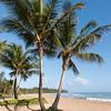 Bahai Beach