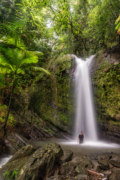 Waterfall in the El Yungue National Rain Forest