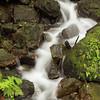 Cascades in El Yungue National Rain Forest