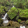 Cascades and waterfalls in El Yungue National Rain Forest