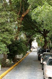 Tree lined street in old San Juan