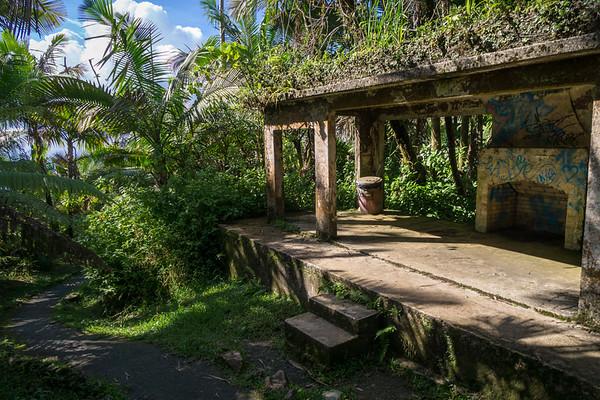 El Yunque National Forest, Puerto Rico, USAEl Yunque Rainforest, Puerto Rico, USA