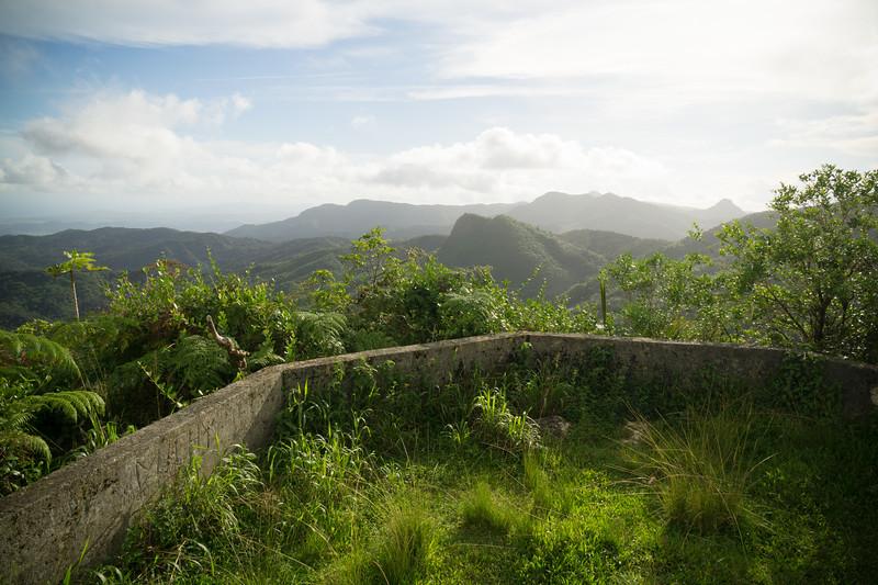 Dos Picachos, El Yunque National Forest, Puerto Rico, USA