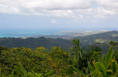 View of the Atlantic Ocean from El Yunque rainforest El Yunque National Forest, Puerto Rico