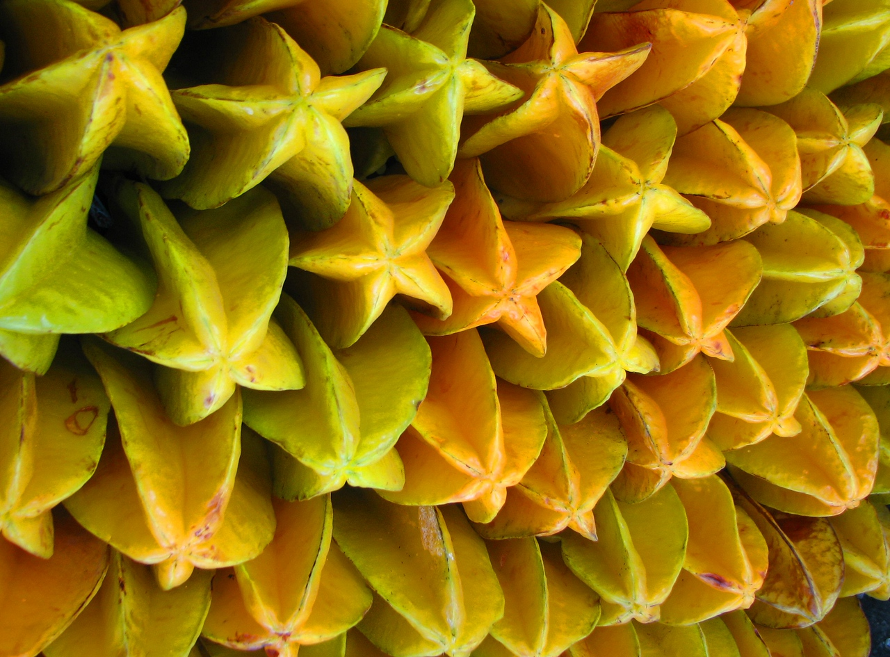 Another exotic fruit, the carambola, originary from India, also grown in Nayarit.<br /> <br /> Otra fruta exotica, la carambola, originaria de la India, tambien crece en Nayarit.