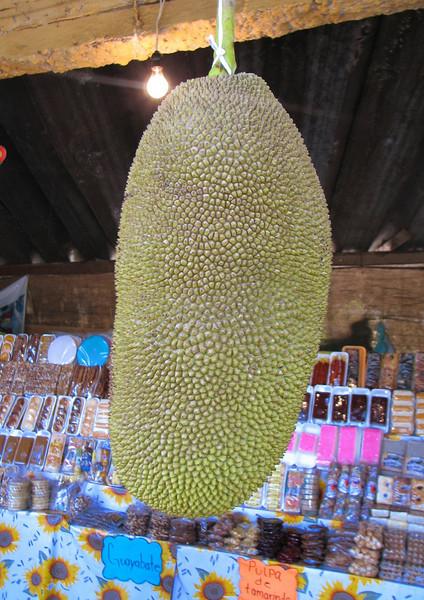 Here I tried the Yaka (or Jackfruit), a fruit, that looks like a guanabana, but tasted like a cross between a banana and a peach...  this fruit is originary from India, but grows in the Nayarit region of Mexico too.<br /> <br /> Aqui probe una Yaka, una fruta parecida a la guanabana, pero del color del mamey, sabe  entre platano y durazno, y es oriunda de la India, pero tambien se da en la region de Nayarit en Mexico.