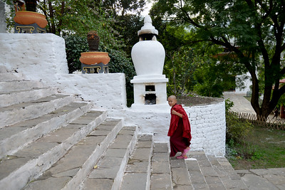"""Steep steps of The Punakha Dzong, also known as Pungtang Dechen Photrang Dzong (which means """"the palace of great happiness or bliss""""), is the administrative centre of Punakha District in Punakha, Bhutan."""
