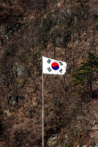 Korean Flag chillin on the hillside