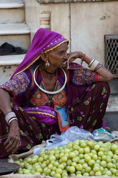 Pushkar-16, India