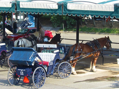 Horse and cart park