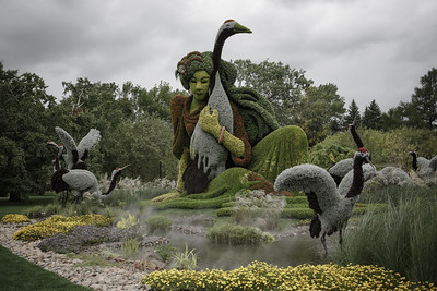 Montreal Botanical Gardens (2013)