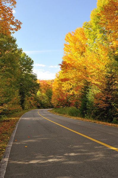 Country road with Autumn colors