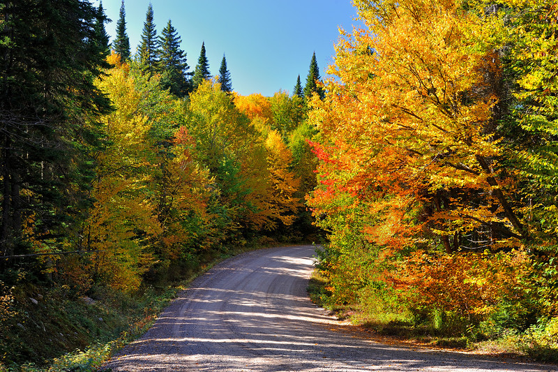 Country road in the Larentians