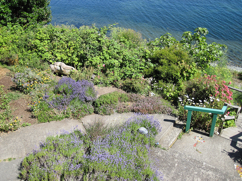 More garden from our deck with some of the seal art, a mom and two babies.