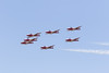 Snowbirds in flight