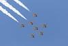 Snowbirds in flight