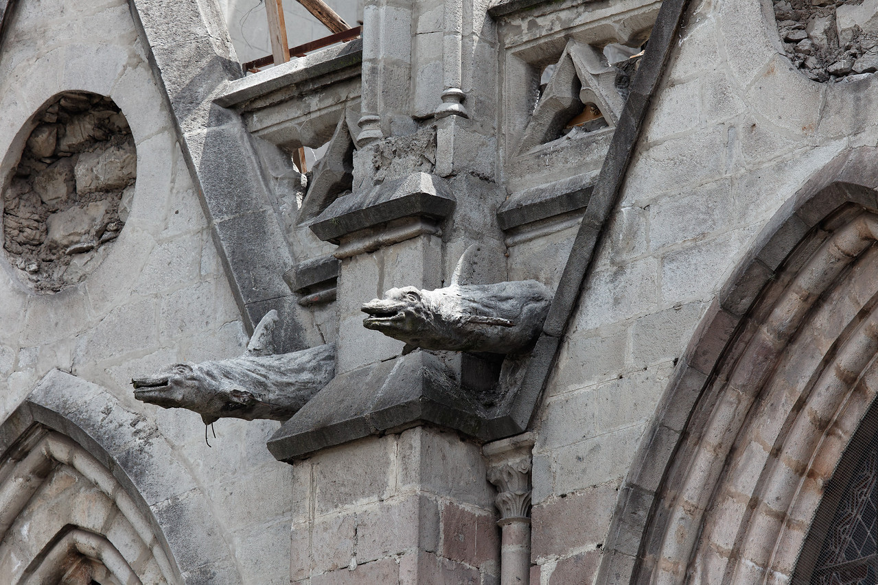 These are gargoyles on the Basilica...