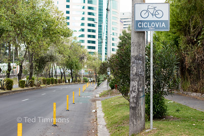 Wand-seperated bike lane on Amazonas, a very major street.