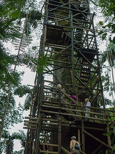 "Sacha Lodge's 135 foot ""tree house"", Kapok Tower observation platform."