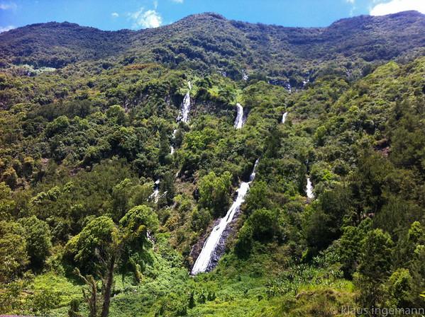 Réunion 2011