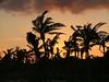 RIU PALACE MEXICO, RIVIERA MAYA, BEACH SUNSET