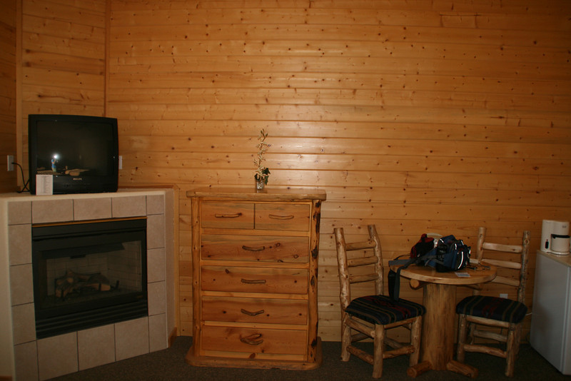 Gas burning fireplace (which we didn't use) and sturdy pine furnature.  Plus a mini-fridge.