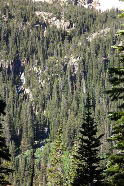 Martensia Falls ribbons through the forest across the valley from Thunder Lake Trail.
