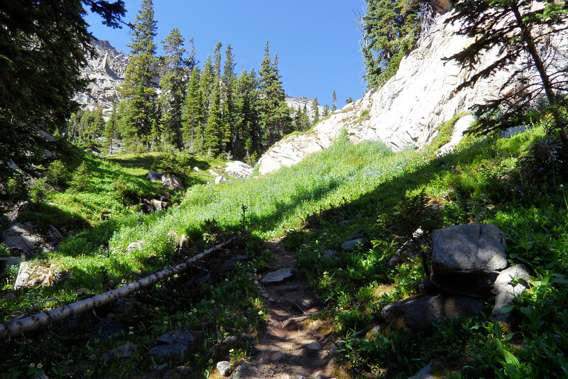 Heading up from Thunder Lake to around 11,000 feet.