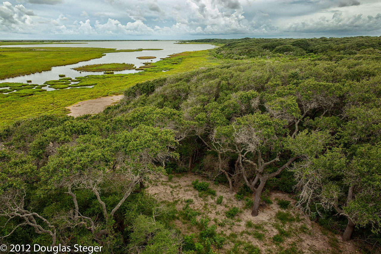 ARANSAS NATIONAL WILDLIFE RESERVE - WHERE THE WHOOPING CRANES WINTER