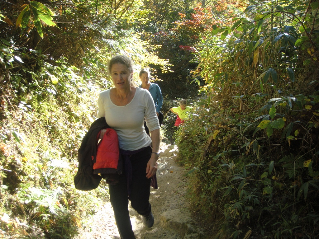 Walking in the Yarisawa Valley.