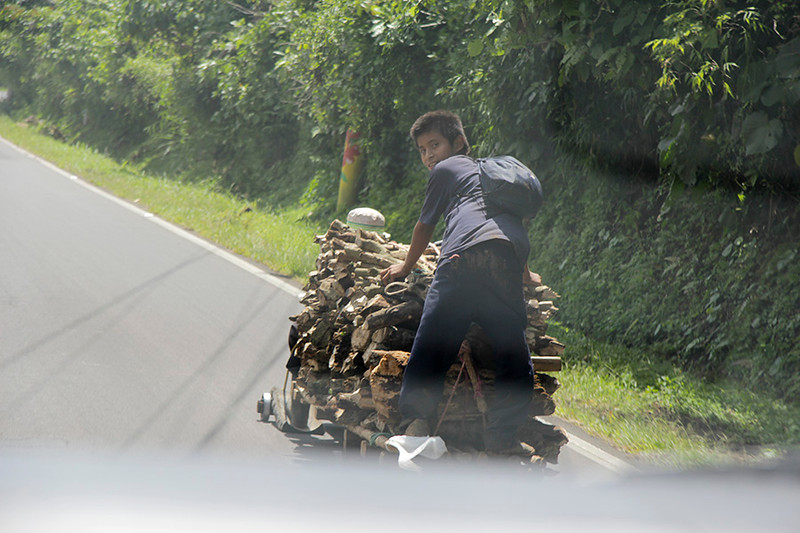 Piled high with wood, the cart is racing down the mountainside to the town below.
