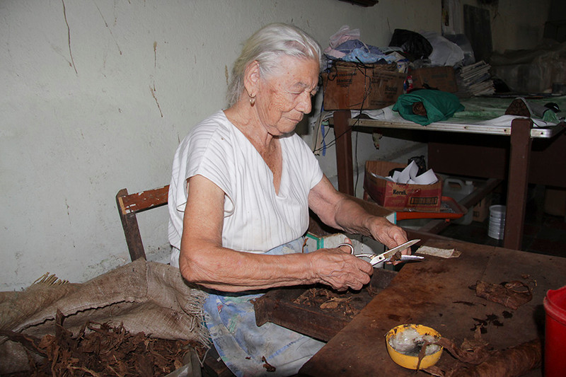 ...Victoria--92 years young and still working--making hundreds of cigars a day! She also takes care of her sister who is blind, keeps birds and tends her atrium garden.